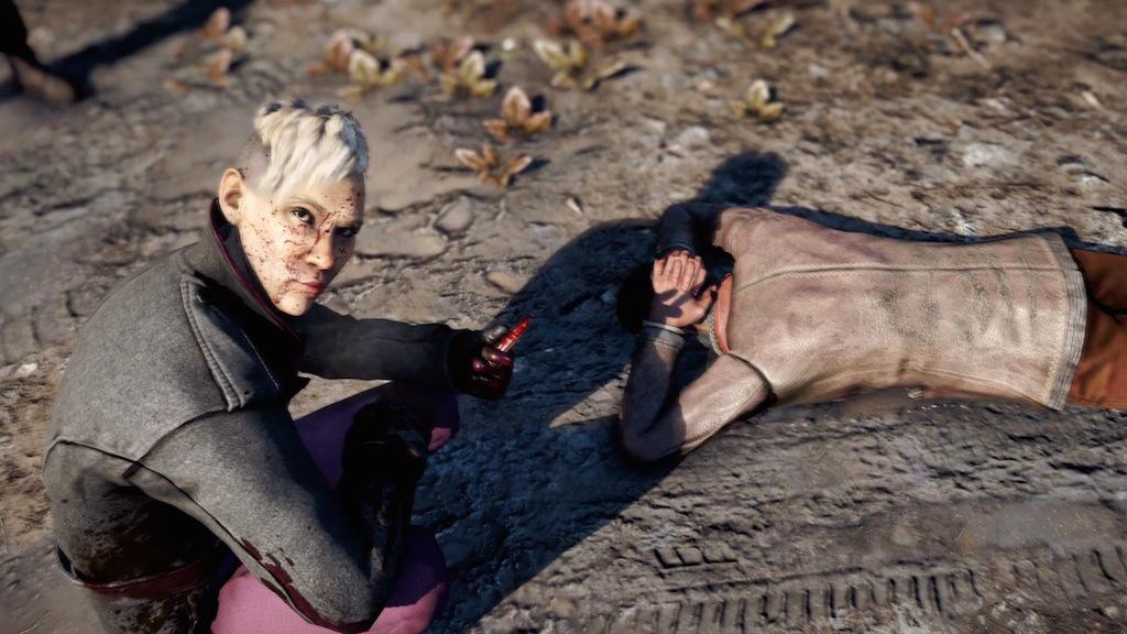 Foto 1 do jogo Far Cry 4