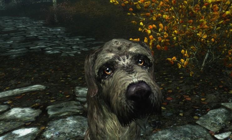 Dog Pet For Chrildren Skyrim
