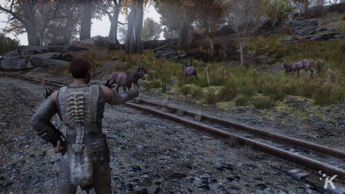 Foto 5 do jogo Fallout 76 – Review