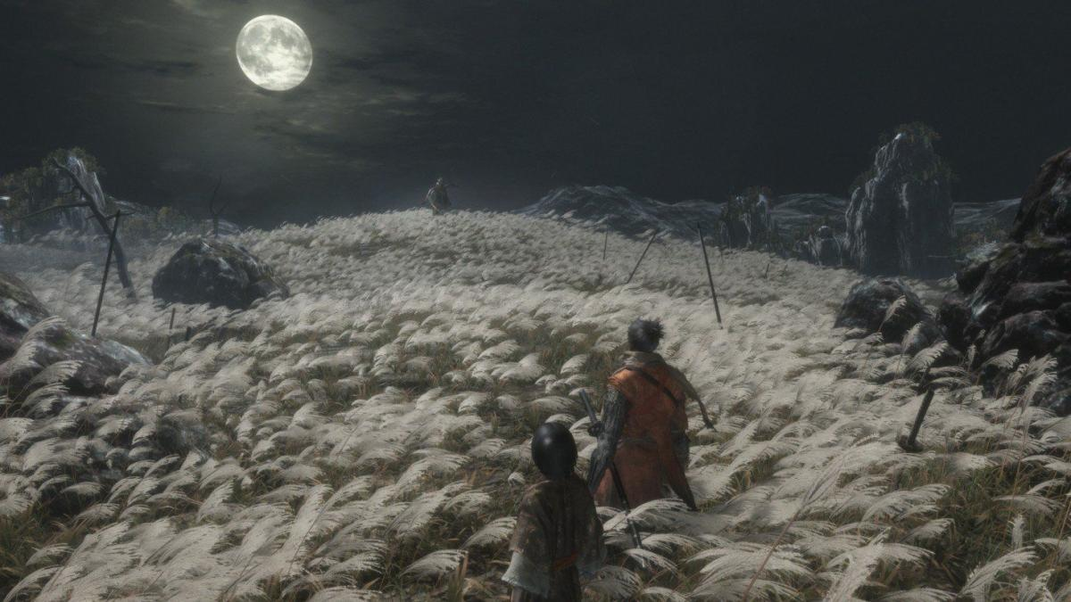 Foto 9 do jogo Sekiro: Shadows Die Twice