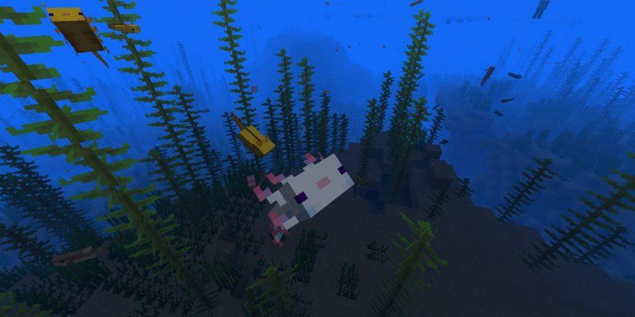 minecraft axolote